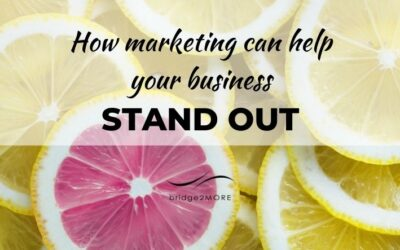 How marketing can help your small business stand out