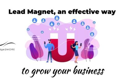 Lead Magnet: an effective tool to grow your business