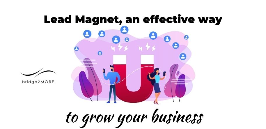 lead-magnet-effective-way-to-buil-your-business